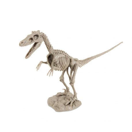 Dino Excavation kit Velociraptor Geoworld