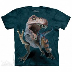 Camiseta Niño The Mountain Rex paz