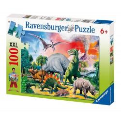 Puzzle de 100 piezas