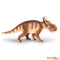 Pachyrhinosaurus Safari