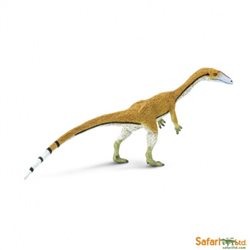 Coelophysis  Safari