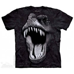 Camiseta Niño The Mountain Brilla en la oscuridad T-rex
