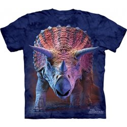 Camiseta Niño The Mountain Triceratops 2