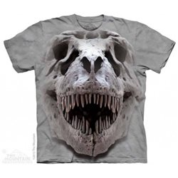 Camiseta Niño The Mountain gran calavera T-Rex