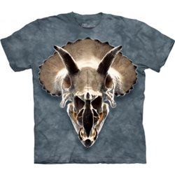 Camiseta Niño The Mountain Calavera de Tricratops