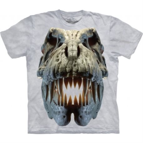 Camiseta Niño The Mountain Calavera de T-Rex