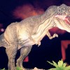 dinosaurios en murcia