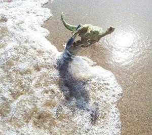 kronosaurus ataque orilla