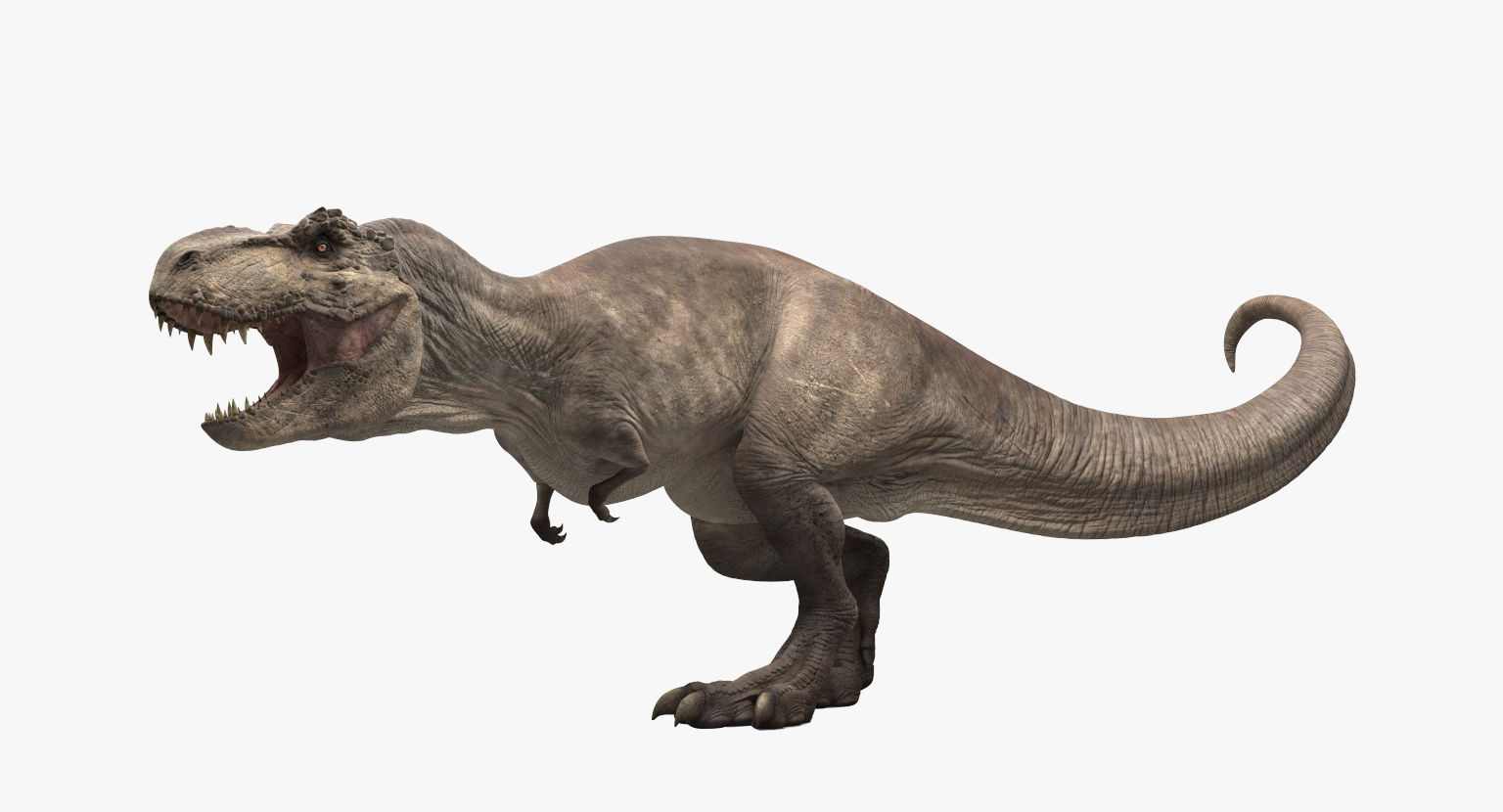 Informacion Tiranosaurio rex