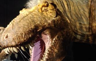 t-rex tiranosaurio rex