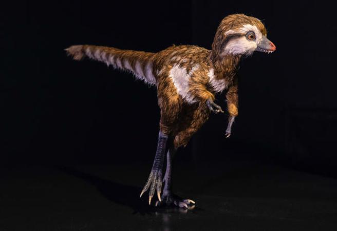 tiranosaurio rex cria